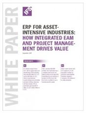 Software Selection for Asset-Intensive Industries