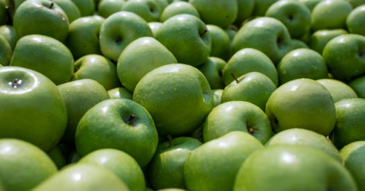 Process Manufacturing - Apples